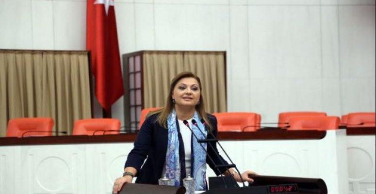 Köksal, yumurtacıların ve turizm işletmecilerinin sorunlarını Meclis gündemine taşıdı